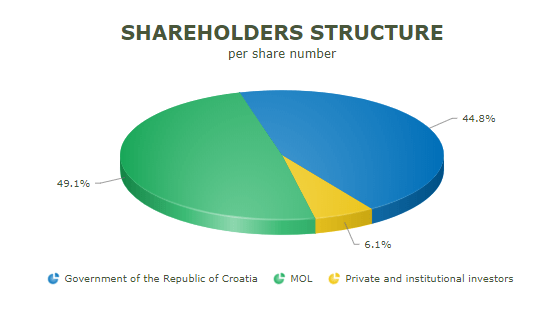 Shareholders structure